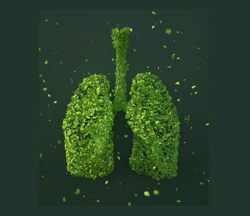 Врачи назвали еще один признак рака легких